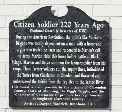 Citizen Soldier 220 Years Ago Marker image. Click for full size.