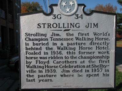 Strolling Jim Marker image. Click for full size.