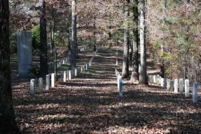 Shelby Springs Confederate Cemetery image. Click for full size.