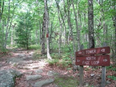 North Face Trail image. Click for full size.