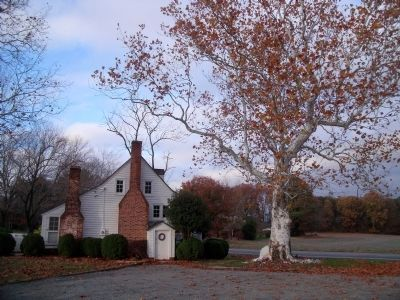 Sycamore trees gave the tavern its name image. Click for full size.