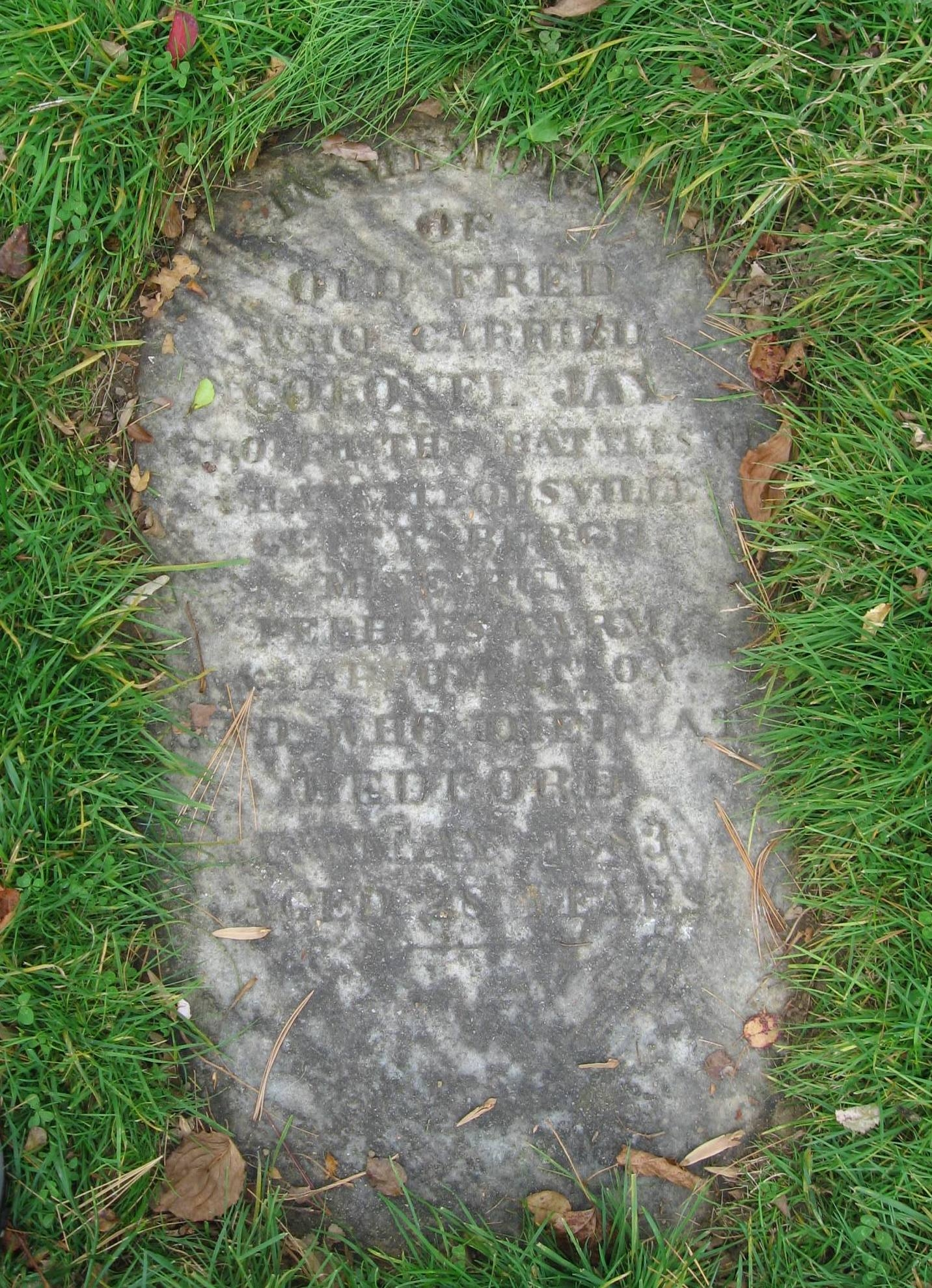 Gravestone of William Jay II's Horse, Old Fred