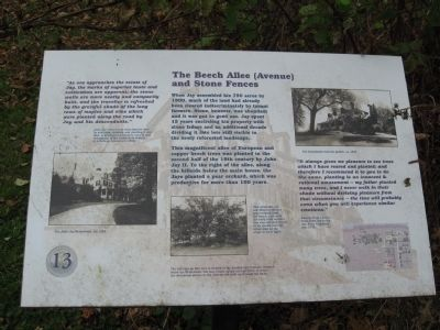 The Beech Allee (Avenue) and Stone Fences Marker image. Click for full size.