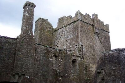 Bective Abbey Tower from Interior image. Click for full size.