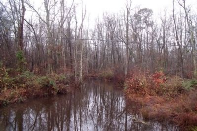 White Oak Swamp image. Click for full size.