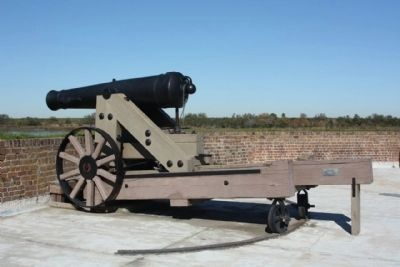 Fort Jackson Cannon image. Click for full size.