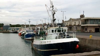 Howth Harbor Fishing Boats image. Click for full size.