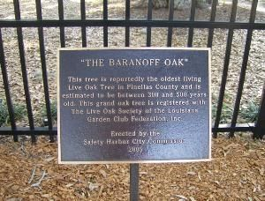 The Baranoff Oak Marker image. Click for full size.