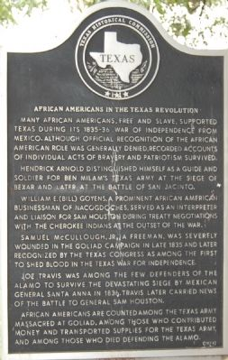 African Americans in the Texas Revolution Marker image. Click for full size.