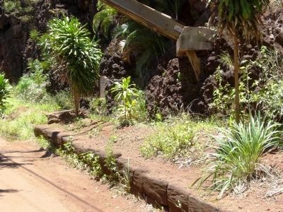 Menehune Ditch - looking south (with marker visible between shrubs) image. Click for full size.