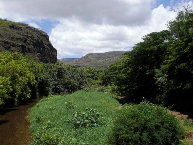 Waimea River Canyon as viewed from Menehune Ditch Marker Site image. Click for full size.