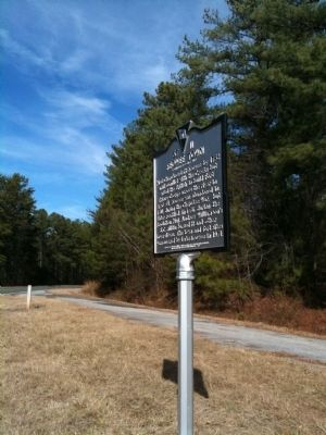 Marker Surrounded by Pine Forest image. Click for full size.