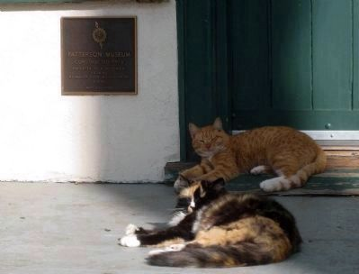 Center Building Dedication Plaque being guarded by fierce watchcats image. Click for full size.