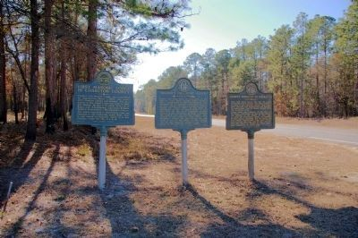 First Masonic Lodge in Charlton County Marker image. Click for full size.