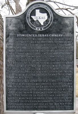 Dismounted Texas Cavalry Marker image. Click for full size.