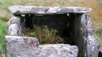 Srahwee or Altóir Megalithic Wedge Tomb image. Click for full size.