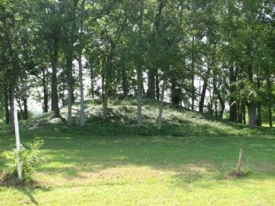 Copena Burial Mound Site image. Click for full size.