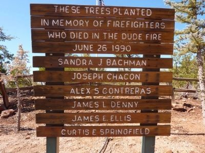 These Trees Planted in Memory of the Firefighters Who Died in the Dude Fire June 26, 1990 Marker image. Click for full size.