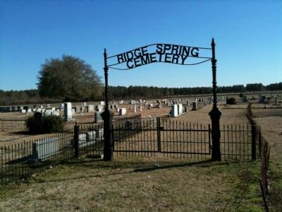 Ridge Spring Cemetery image. Click for full size.