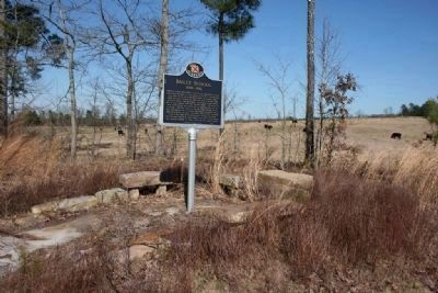 Bailey School Marker Next to the Cow Pasture image. Click for full size.