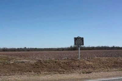 Rev. Thomas Reese English Marker Amid the Cotton Fields of Lee County image. Click for full size.