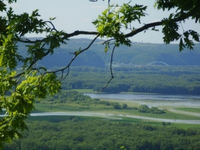 View of Upper Mississippi River from Passenger Pigeon Monument image. Click for full size.