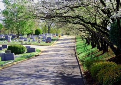 Springwood Cemetery image. Click for full size.
