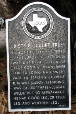 District Court Tree Marker image. Click for full size.