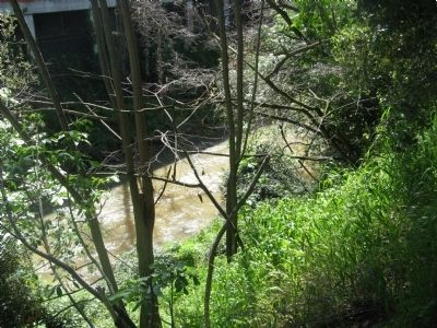 San Lorenzo Creek image. Click for full size.