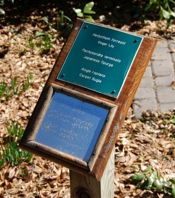 Sensory Garden Signage<br>Top in Large Print<br>Bottom in Braille image. Click for full size.