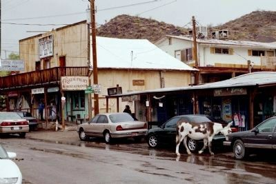 Oatman, Arizona Where Burros Rule the Road image. Click for full size.