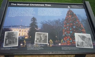 The National Christmas Tree Marker image. Click for full size.