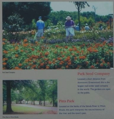 Greenwood County -<br>Park See Company and Pitts Park image. Click for full size.