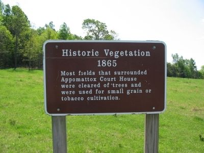 Historic Vegetation 1865 Marker image. Click for full size.