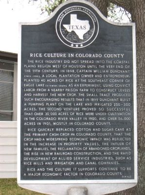 Rice Culture in Colorado County Marker image. Click for full size.