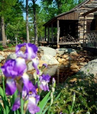 Gosnell Cabin and Garden image. Click for full size.