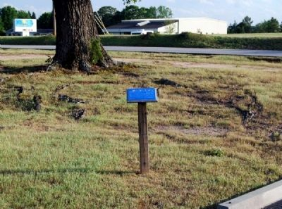 The Old Oak Tree Marker -<br>Holland Road in Background image. Click for full size.