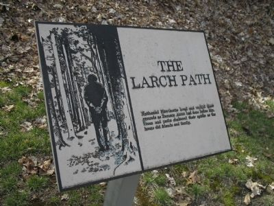 The Larch Path Marker image. Click for full size.