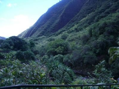 ʻĪao Valley stream bed image. Click for full size.