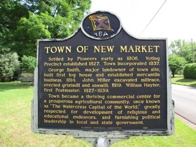 Town of New Market Marker image. Click for full size.