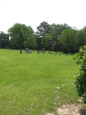 Homer Cemetery image. Click for full size.