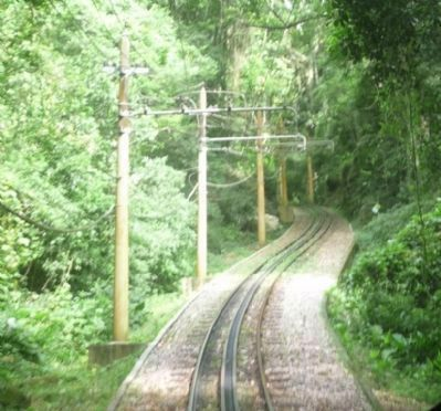 "View of the ""rack"" railway track - from the tram climbing Corcovado image. Click for full size."