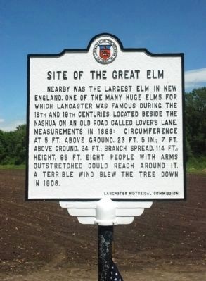 Site of the Great Elm Marker image. Click for full size.