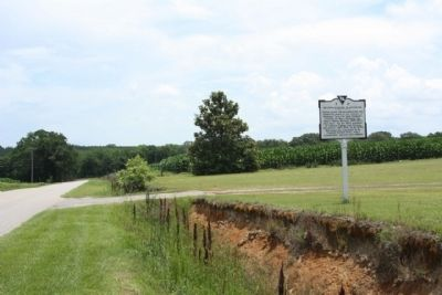 Mountain Home Plantation Marker, looking east image. Click for full size.