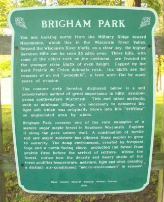 Brigham Park Marker image. Click for full size.