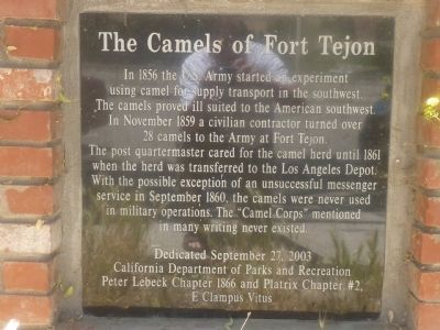 The Camels of Fort Tejon Marker image. Click for full size.