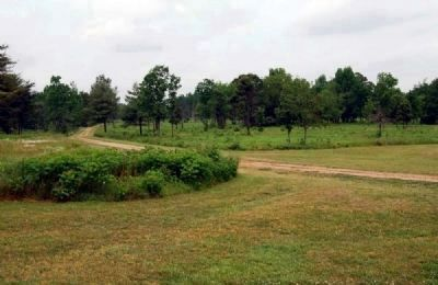 Green River Road Leading West from<br>Scruggs House to Battlefield Site image. Click for full size.
