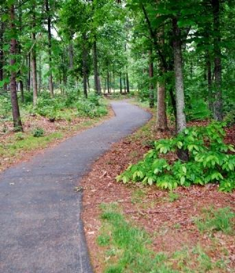 Path Leading Through Woods to<br>Green River Road image. Click for full size.