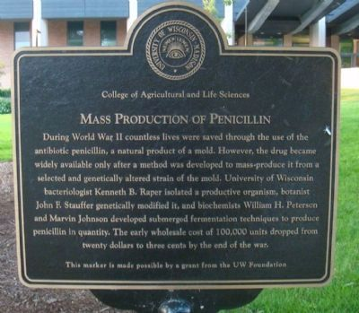 Mass Production of Penicillin Marker image. Click for full size.