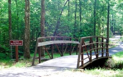 Historic Spring Branch Bridge -<br>Located Near the Environmental Change From Forest to Park Marker image. Click for full size.